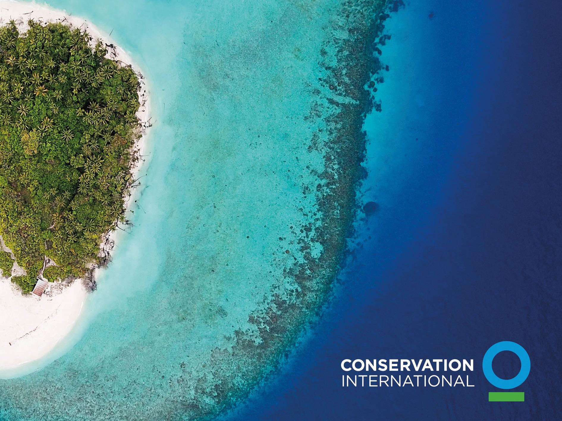 https://api.treecer.com/storage/754/Conservation-International-Bild.jpg